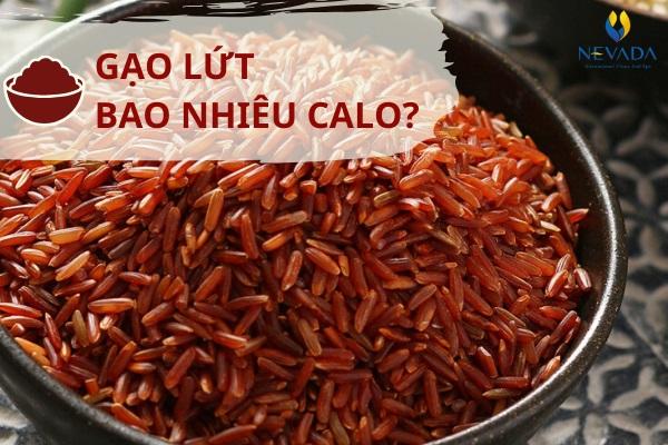 100g gạo lứt bao nhiêu calo? Nếu muốn giảm cân chắn chắn bạn không thể bỏ qua thực phẩm này