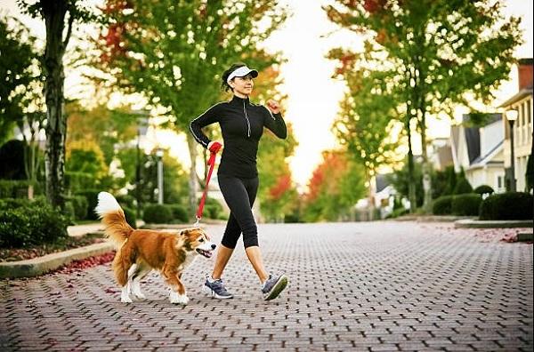 di bo co giam can khong, đi bộ có giảm cân không, đi bộ giảm cân, đi bộ bao lâu thì giảm cân, đi bộ bao lâu để giảm cân, đi bộ có giảm cân được không, kinh nghiệm đi bộ giảm cân, đi bộ có giảm cân k, đi bộ trên máy có giảm cân không, đi bộ nhiều có giúp giảm cân không, mỗi ngày nên đi bộ bao nhiêu km, chạy bộ hay đi bộ giảm cân nhanh hơn, đi bộ bao nhiêu km một ngày để giảm cân, bài tập đi bộ giảm cân, đi bộ hay chạy bộ giảm cân tốt hơn, đi bộ hay chạy bộ giảm cân nhanh hơn, nên chạy bộ hay đi bộ, một ngày nên đi bộ bao nhiêu km, đi bộ giảm cân của người nhật, cách đi bộ giảm mỡ bụng, 1 ngày nên đi bộ bao nhiêu km, chạy bộ tốt hay đi bộ tốt, đi bộ có tác dụng giảm cân không, đi bộ mỗi ngày có giảm cân không, đi bộ hay chạy bộ tốt hơn, đi bộ có giảm mỡ bụng không, đi bộ có giúp giảm cân không, đi bộ 30 phút giảm bao nhiêu calo, đi bộ bằng máy có giảm cân không, đi bộ như thế nào để giảm cân, đi bộ đúng cách để giảm mỡ bụng, đi bộ bao lâu mới giảm mỡ bụng, đi bộ có giảm eo được không, đi bộ có làm giảm mỡ bụng, đi bộ có giảm được mỡ bụng không, đi bộ cầu thang có giúp giảm cân, đi bộ giảm mỡ bụng, đi bộ đúng cách để giảm cân, đi bộ cầu thang có tác dụng gì, đi bộ mỗi ngày có tác dụng gì, đi bộ có giảm mỡ bụng, 1 ngày nên đi bộ bao nhiêu bước, đi bộ có tác dụng gì, nên đi bộ hay chạy bộ để giảm cân, đi bộ bao nhiêu bước để giảm cân, đi bộ giảm bao nhiêu calo, đi bộ cầu thang có giảm cân không, đi bộ 30 phút mỗi ngày có tác dụng gì, đi bộ cầu thang có giảm cân, tác dụng của đi bộ, tác dụng đi bộ, đi bộ đúng cách, cách đi bộ giảm cân, đi bộ như thế nào để giảm mỡ bụng, đi bộ bao nhiêu phút để giảm cân, đi bộ giảm cân không, đi bộ có làm tan mỡ bụng, đi bộ nhanh có giảm cân không, cách đi bộ giảm mỡ bụng của người nhật, đi bộ trên máy có tác dụng gì, đi bộ bao nhiêu calo, đi bộ bao nhiêu bước mỗi ngày, đi bộ thể dục có giảm cân không, đi bộ giảm cân đúng cách, đi bộ giam cân nhanh, đi bộ giúp giảm cân, giảm cân bằng đi bộ, đi bộ nhanh có tác dụng gì, tác dụng của đi bộ nh